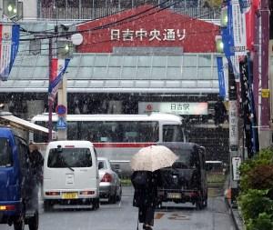 日吉駅前の黄色い銀杏並木に雪が舞う、半世紀ぶり11月積雪で日中気温は2度台