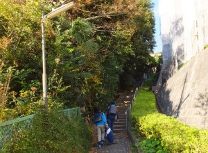 <港北区・がけ地調査>日吉本町2丁目の一部斜面エリア、避難勧告発令の対象に