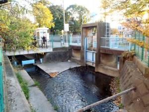 「二ヶ領用水」と水害を学ぶ無料バスツアー、1/29(日)9時に日吉駅を出発