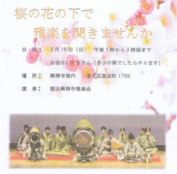 早咲きの桜の名所で雅楽の響き、3/19(日)午後に高田の興禅寺で