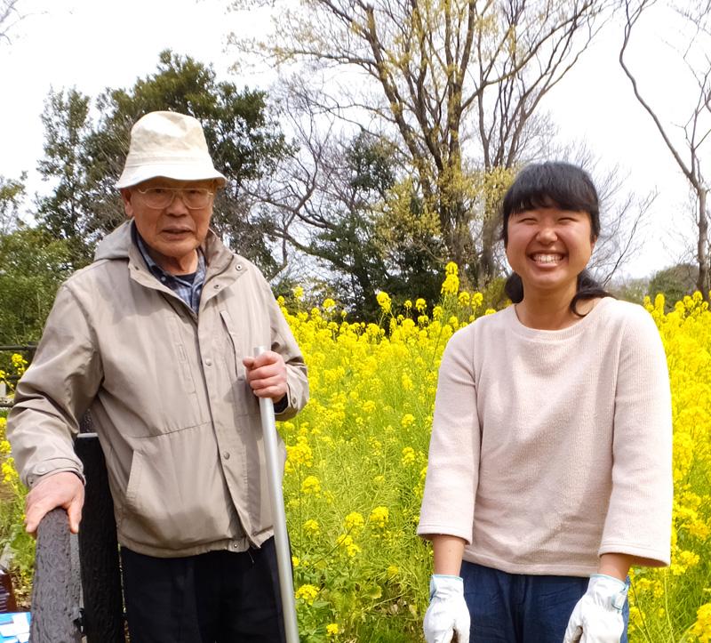 桜も開花した日吉の丘公園で新たな花壇作り、菜の花も4月中頃まで見頃
