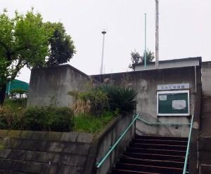 高田で保育園が足りない、公園内にも整備求める声に市は「代替策の1つ」