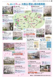 満開予想は4/2(日)、新横浜・菊名・大倉山の「桜」スポットを紹介