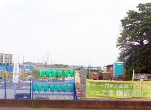 手ぶらで野菜づくりOK、高田町の「シェア畑」が4/23まで入会金5000円引き