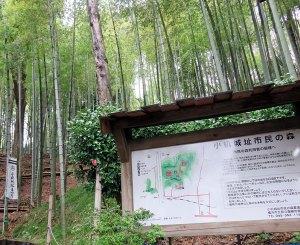 <小机城>「続日本の100名城」に選出、小田原以外では神奈川県で初
