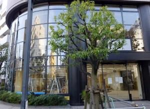 綱島東の書店跡、6月上旬からウェルシア傘下のドラッグストア「HAC綱島駅東口店」