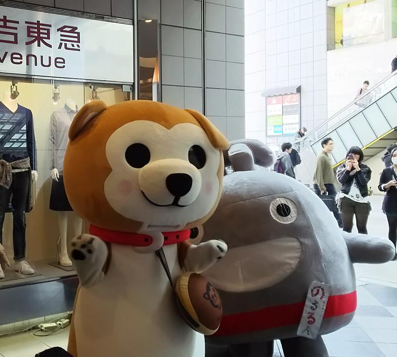 <日吉東急>4/29(土)からGWイベント、ゆるキャラ登場やワークショップ