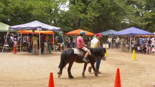 綱島公園での「移動動物園」は今週末、6/3(土)10時30分から13時まで