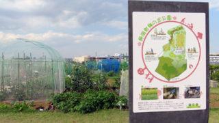 新吉田東4丁目に「農地付き公園」の整備を計画、師岡に次ぎ区内2カ所目に