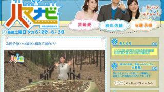 TVK「ハマナビ」の城特集で小机城が登場、きょう7/15(土)18時から放送