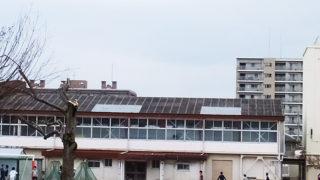 綱島小学校の体育館とプール解体工事に着手、2019年3月までに建て替え
