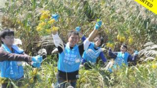 トヨタの鶴見川保全イベント、綱島東1で10/29(日)に「アクアソーシャルフェス」