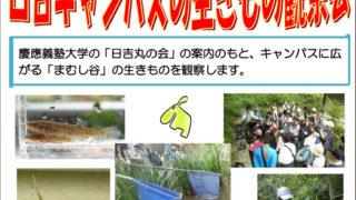 1300種の生物種が存在する日吉キャンパス、11/4(土)に親子向け「生きもの観察会」