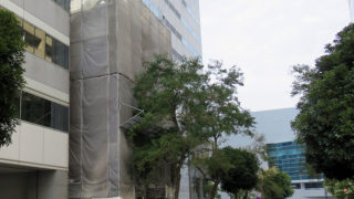 新横浜3丁目に建設中「5階建てビル」、24時間フットネスは12月から施設見学を開始