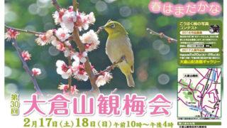 平成と共に歩む「大倉山観梅会」、30回目の2018年は2/17(土)・18(日)に