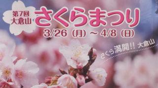 2018年の大倉山さくらまつりは3/31(土)、レモンロードで盛り上げの花植えも