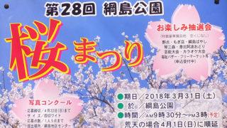 綱島公園の花満開なるか、平成とともに歩む2018年桜まつりは3/31(土)